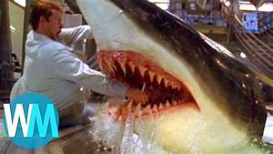 Radar Qui Flashe Le Plus : top 10 des attaques de requin les plus terrifiantes youtube ~ Medecine-chirurgie-esthetiques.com Avis de Voitures