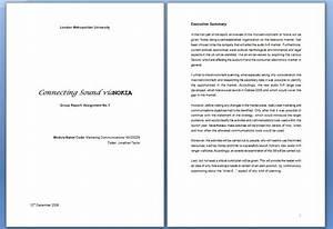 vianokia cover page executive summary kat39s pr portfolio With pr portfolio template