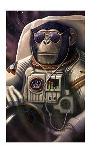 monkey, Astronaut, Glasses, Helmet, Fantasy, Animals ...