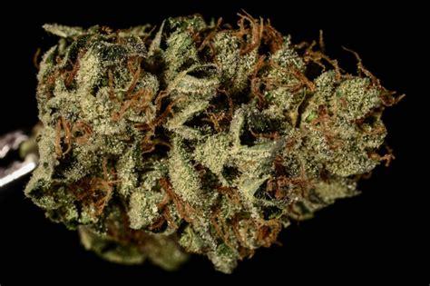bruce banner 3 marijuana review the cannabist