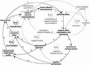 Causal Loop Diagram Of Cognitive  Social And Environmental