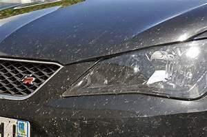 Enlever Résine Sur Carrosserie : nettoyer la carrosserie conseils pour bien laver sa voiture nettoyage et entretien ~ Dallasstarsshop.com Idées de Décoration