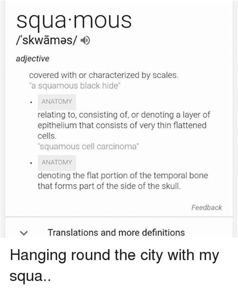squamous carcinoma cell squa hanging round cells memes
