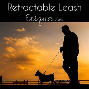 Retractable Leash Dangers and Etiquette – This Pug Life