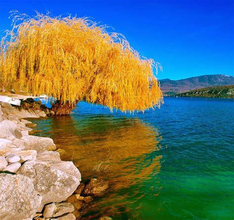 Beautiful Images Of Love And Nature  Wwwimgkidcom The