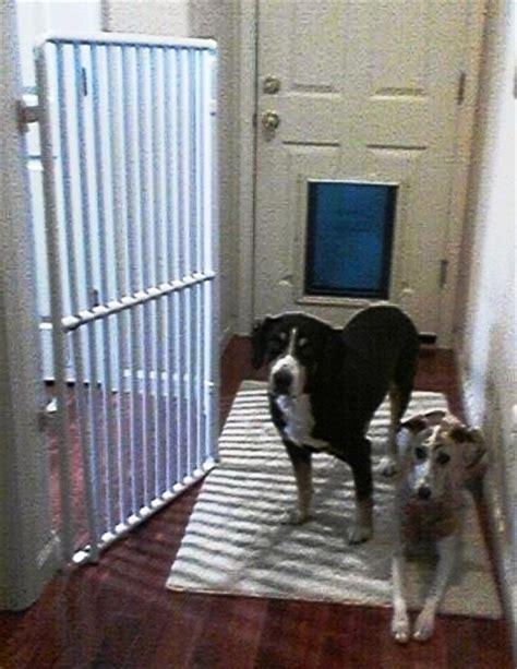 cat gate cat indoor gate rover company
