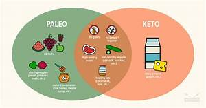 Paleo Vs Keto  Similarities  Differences   Which Is Best