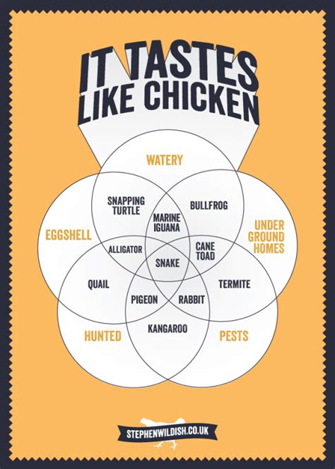 chicken tastes taste food exotic fish meats venn describe smells everything diagrams infographic tasting meat things chart looks foods flavor