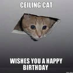 birthday cat meme ceiling cat wishes you a happy birthday ceiling cat