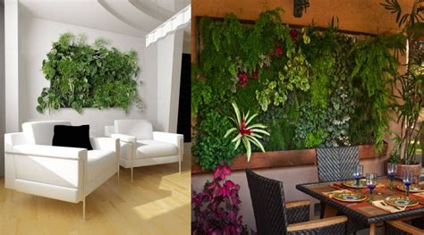 the wall farm indoor vertical garden click grow 17 best