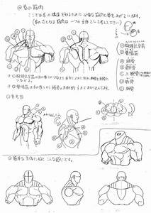 Analyzing Capcom U0026 39 S Anatomy Guide With English Translation