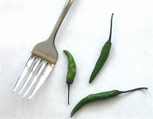 Key Ingredients – Indian Chilies — hungry desi