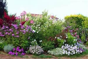 massif fleurs vivaces plein soleil With chambre bébé design avec bordure massif fleuri