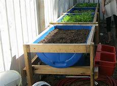 Garden Projects for 55 Gallon Barrel Drums GardensAll