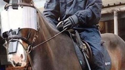 Bud the police horse that was punched after football derby ...