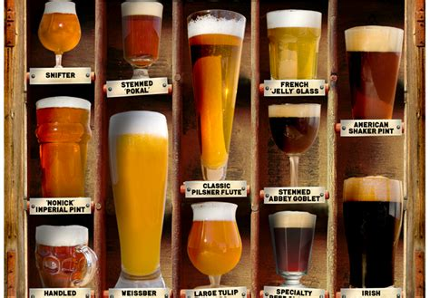 Which Beer Glass Should I Use?