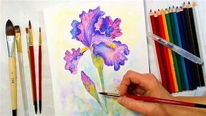 Iris Watercolor Pencil Drawing And Painting Tutorial