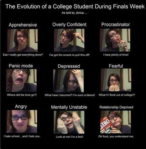 Funny Finals Memes - good luck with finalsweek finals tips and inspiration pinterest feelings school humor