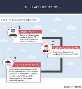 Annulation Permis De Conduire : annulation de permis ~ Medecine-chirurgie-esthetiques.com Avis de Voitures