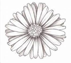 Daisy outline | Tattoos | Pinterest
