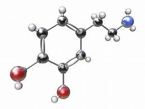 Diagram Of Chemical Bonding