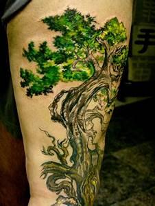Tree Tattoo Designs   zentrader