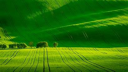 Moravia South