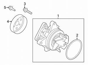 2016 Land Rover Discovery Sport Engine Water Pump Pulley