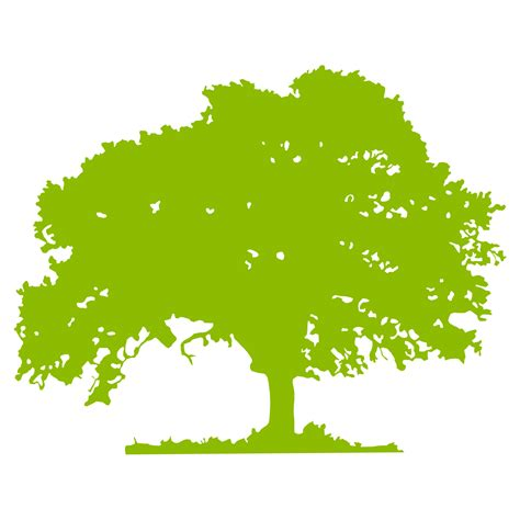 free vector tree images clipart best