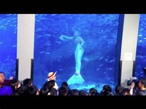 Real Mermaid Footage in Japan Aquarium Live TV - YouTube