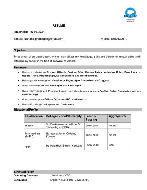 Salesforce Administrator Resume by Salesforce Certified Developer Resume Essaysbank X Fc2