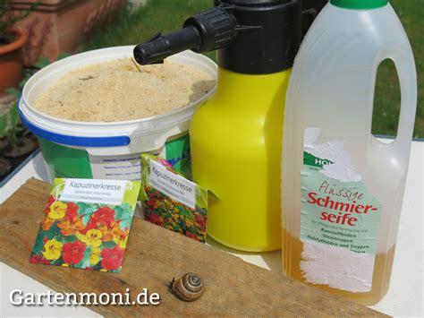 Pflanzen Gegen Staub by Schmierseife Gegen L 228 Use Pflanzen F 252 R Nassen Boden