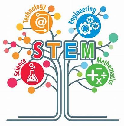 Stem Education Academy Science Technology Mc Professional
