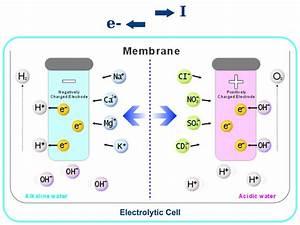 How An Alkaline Water Ionizer Works Diagram