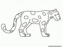 HD Wallpapers Animal Classification Coloring Pages