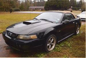 2001 Ford Mustang GT Convertible for sale #1854132 | Hemmings Motor News