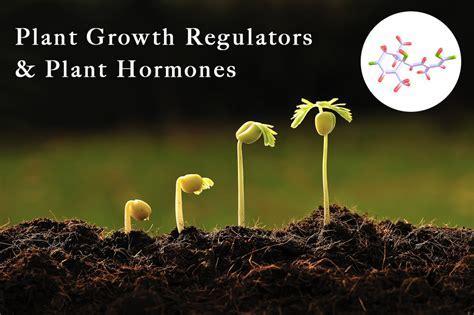 Growth Regulators in Plants and Plant Hormones