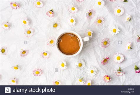 Cup Of Coffee And Daisy Flowers On White Fabric Stock Siphon Coffee How To Use Where Buy Turkish Pot In Toronto San Francisco Bay Gourmet Pods Amazon Nyc French Roast 80 Count Organic Rainforest Blend Maker Kuwait