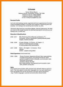 Examples Personal Profile Statements – Perfect Resume