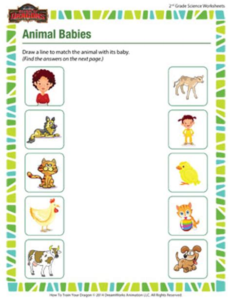 animal babies free science worksheet for 2nd grade sod