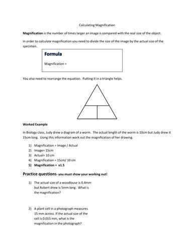 Biological Magnification Worksheet - Sanfranciscolife