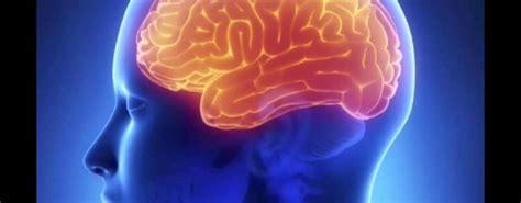 Tips Kandungan Subur 4 Kemuan Otak Manusia Yang Mungkin Belum Anda Tahu