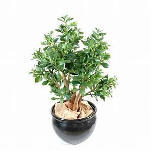 Plante Grasse Artificielle : crassula large artificiel de 65 cm de haut en pot en pvc ~ Teatrodelosmanantiales.com Idées de Décoration