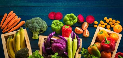 cuisiner vegan cuisiner vegan avec du matériel pro le fourniresto com