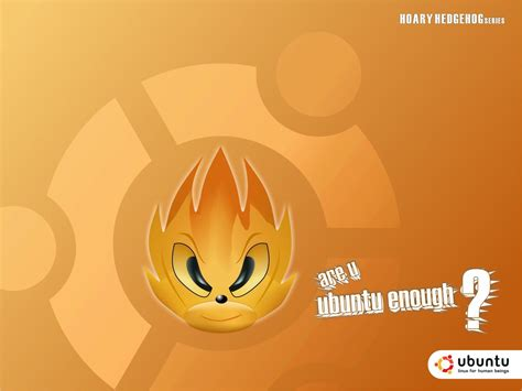 hoary color the hoary hedgehog by xsos on deviantart