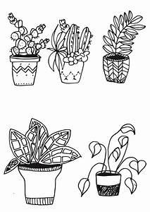 Bilder Zeichnen Für Anfänger : pflanzen zeichnen f r anf nger ganz leicht gemacht ~ Frokenaadalensverden.com Haus und Dekorationen