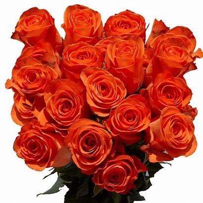 Roses Orange Flower Arrangements Mother Globalrose Flowers