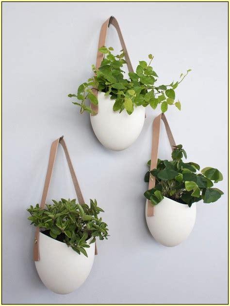 Terrarium Design marvellous decorative hanging pots