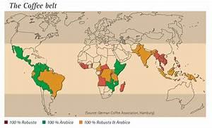 Coffee Belt  Learn Where The World U0026 39 S Best Coffee Is Grown