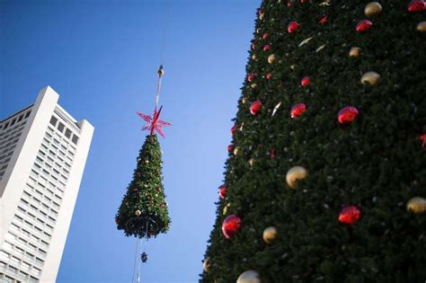 how union square s huge christmas tree is unwrapped